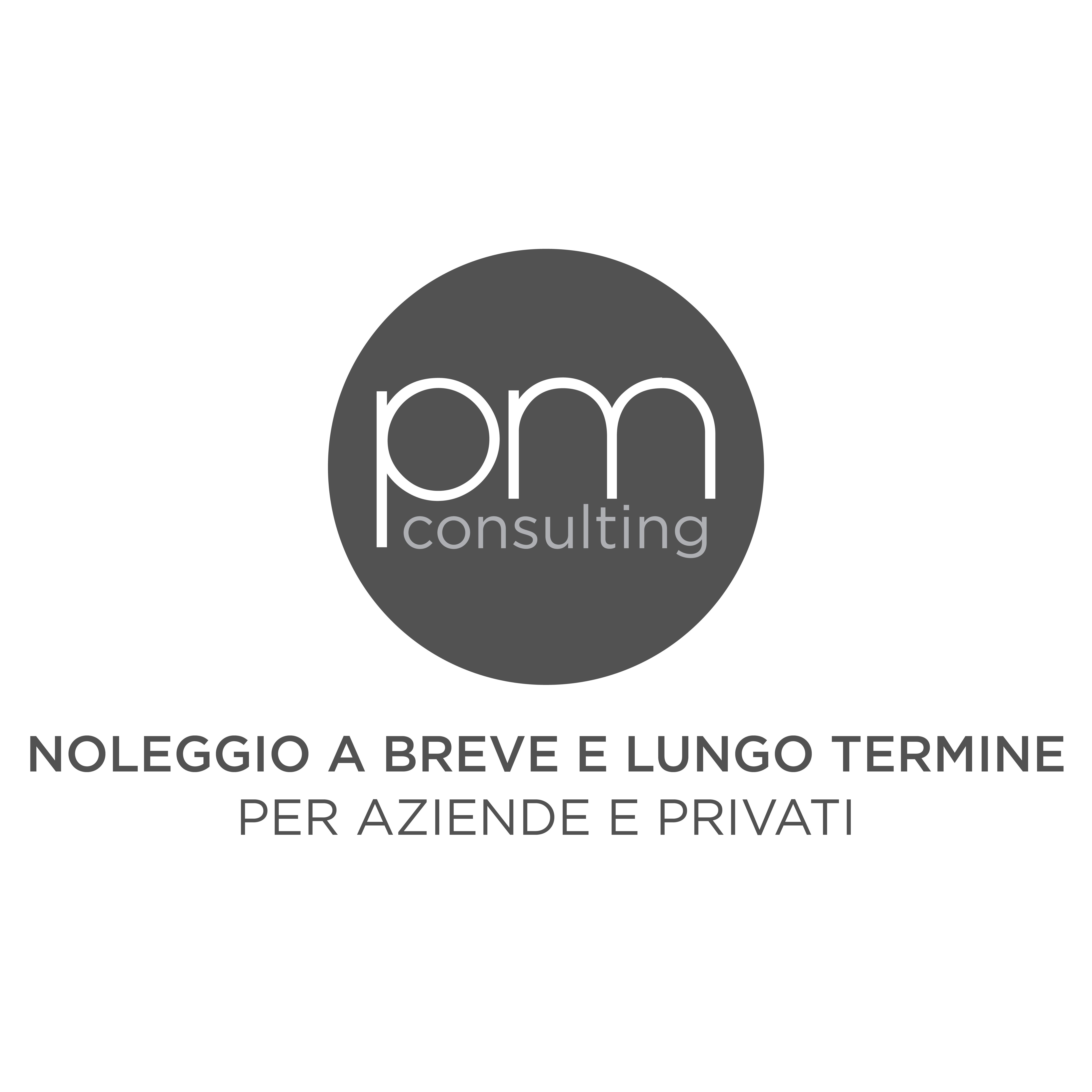 pm-consulting-logo